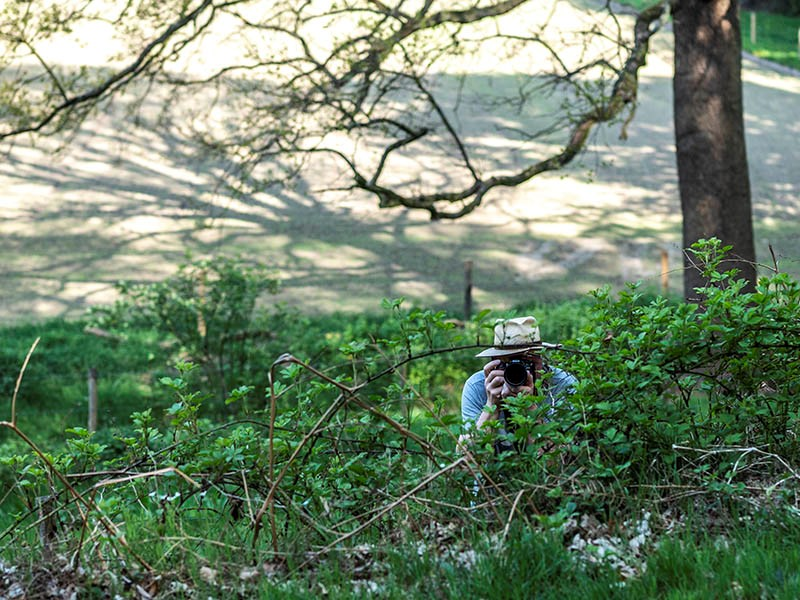 Fotograaf: Els Baltjes 'De Zelfontspanners'