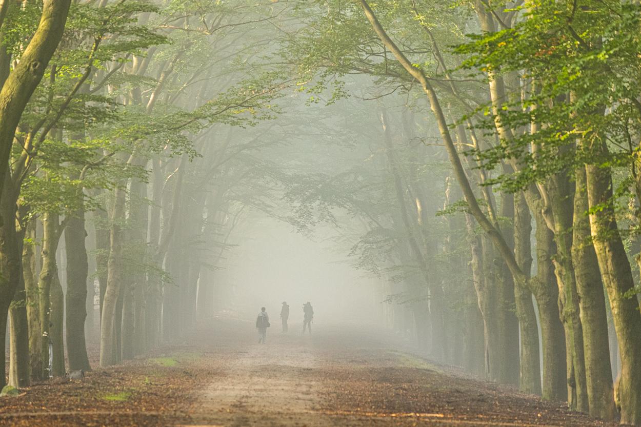 Inge Pfeil, Otterlo in de mist