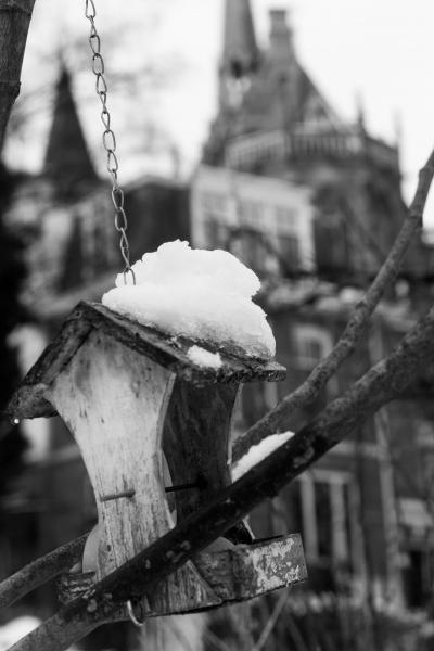 Fotograaf: Inge Pfeil 'Vogelhuisje'