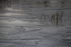 Fotograaf: Astrid Sanders 'Dun ijs'