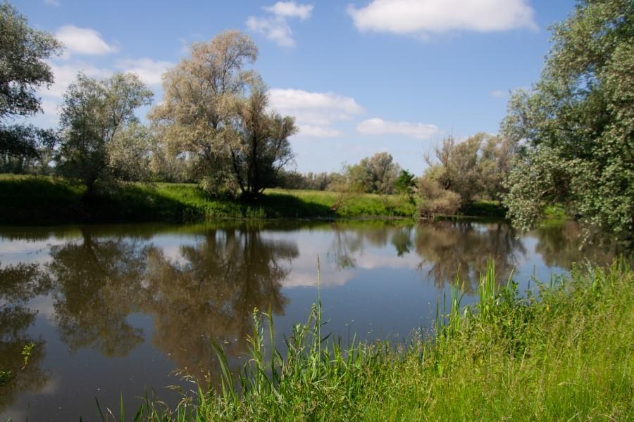 Astrid Sanders: Waterlandschap
