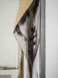 Els Baltjes: Kunst aan de muur