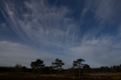 Fotograaf: Astrid Sanders 'Het zit in de lucht'