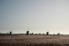Henk Kinderdijk