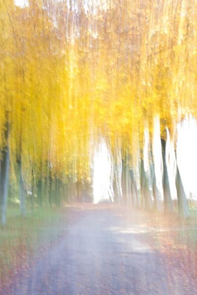 Fotograaf: Astrid Sanders 'Er is licht aan de horizon'