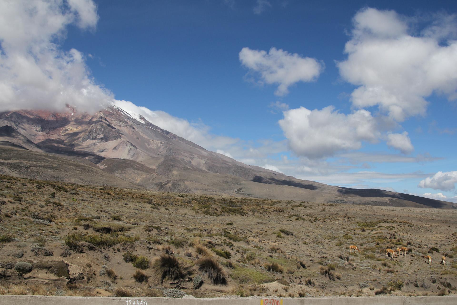 Fotograaf: Astrid Sanders 'Op de Chimborazo'