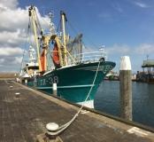 Texelse vissersboot