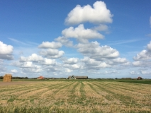 Texel vlakkeland met mooie lucht