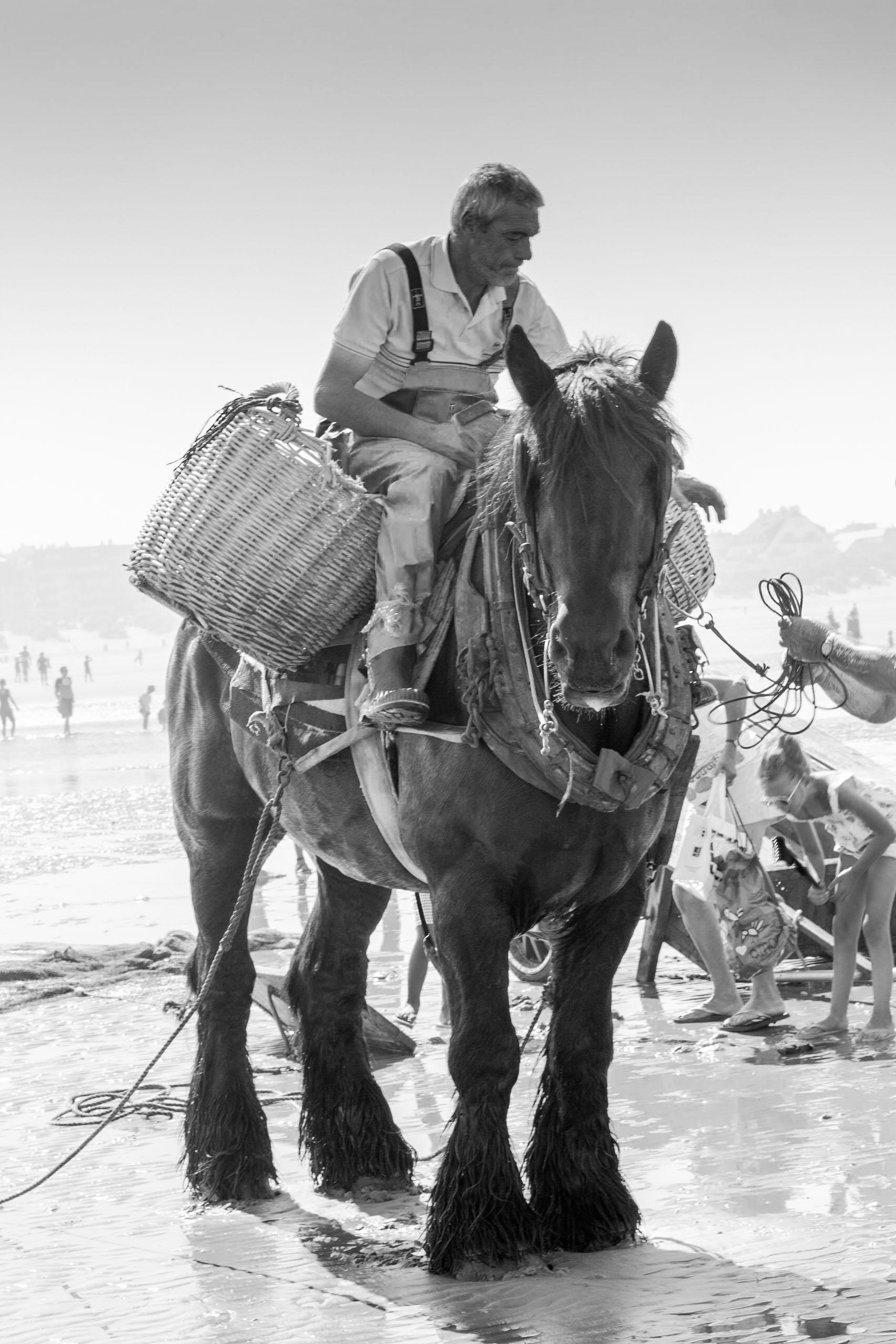 Fotograaf Inge Pfeil, Garnalenvissers te paard (Be)