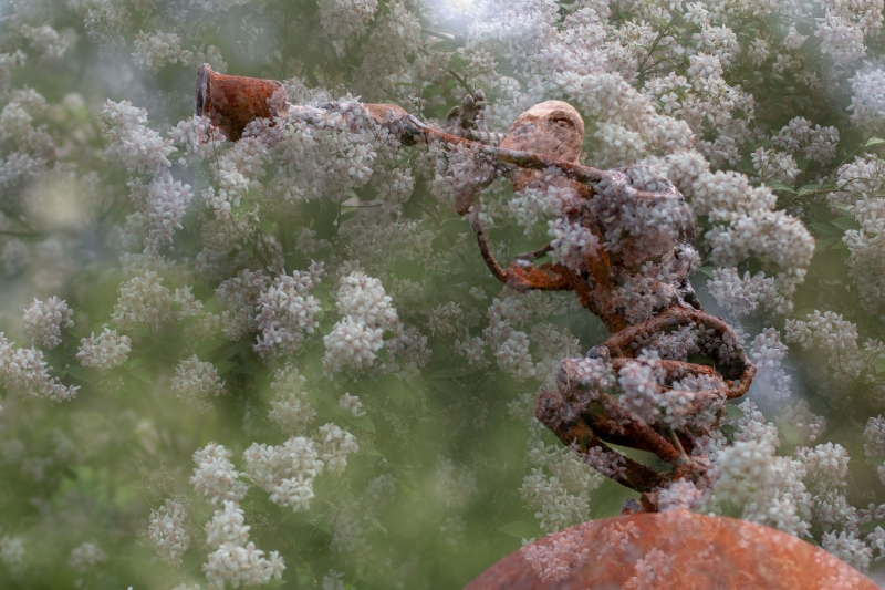 Fotograaf Inge Pfeil, Millinger Theetuin, kunst en bloemen (meervoudige belichting)