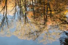 Fotograaf Inge Pfeil, Herfst