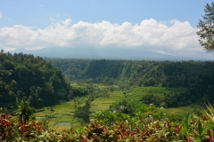 Landschap (Bali)