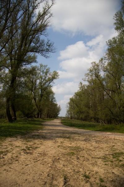 Astrid Sanders: De weg is nog lang