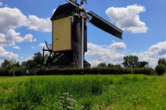 Carry Megens: Zeldenrust molen Overasselt