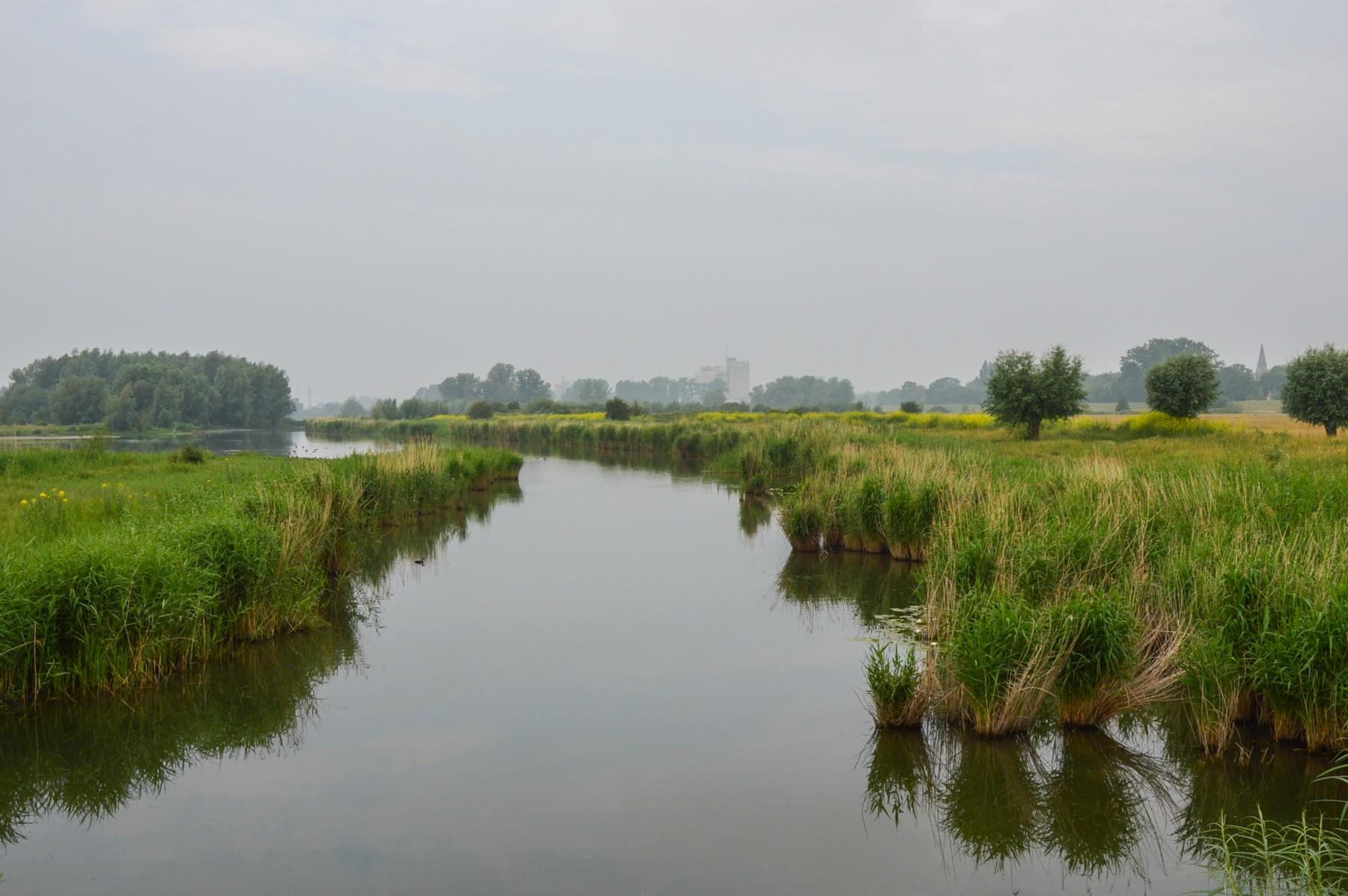 Marlies Reimering, Wageningen